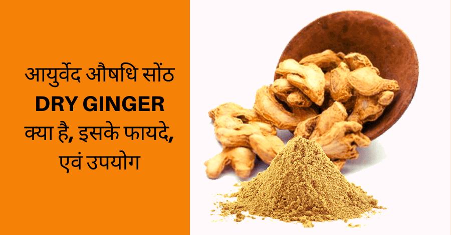 सोंठ-dry-ginger-benefits-uses-in-ayurveda, आयुर्वेद-औषधि-सोंठ-DRY-GINGER-क्या-है-एवं-इसके-फायदे