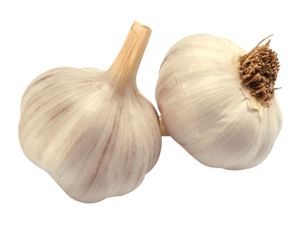 lashun-Garlic-an-important-ingredient-of-Heart-health-Herbal-daily-heart-health, herbal remedy for smoking, natural remedy for smoking, craving and addictions