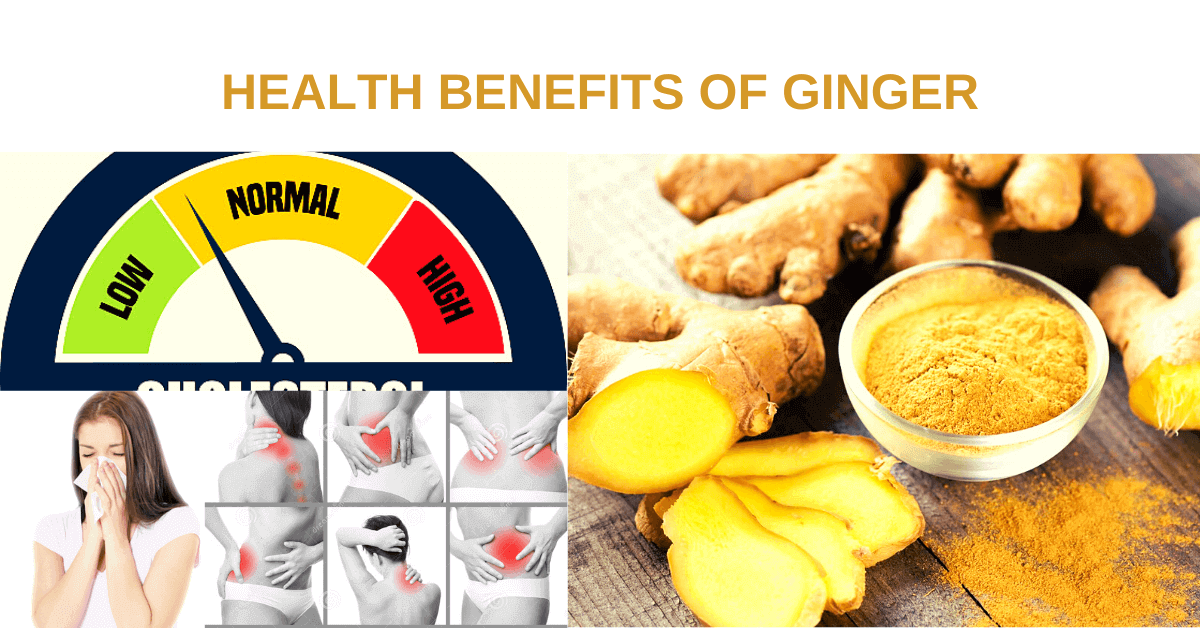 Health-benefits-of-ginger-Zingiber-officinale-best-natural-herb-for-immunity-power