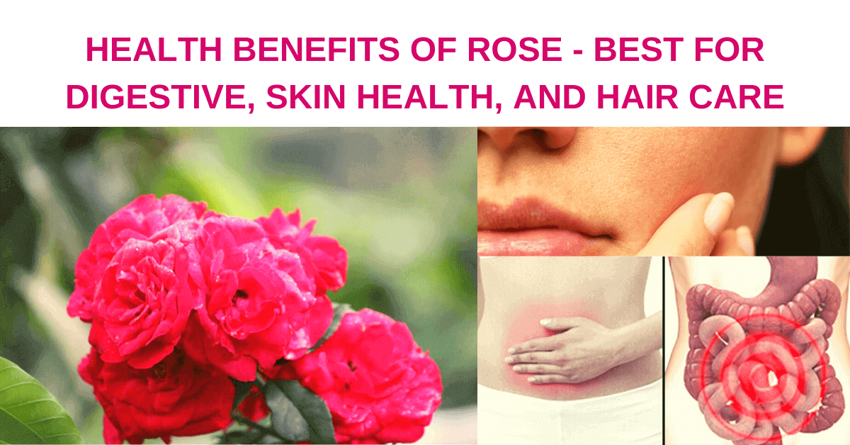 health benefits of rose, best for digestive, skin health, and hair care, rich in antioxidant